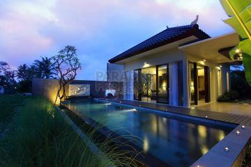 Luxurious 1 and 2 Bedroom Villa in Sanggingan Ubud