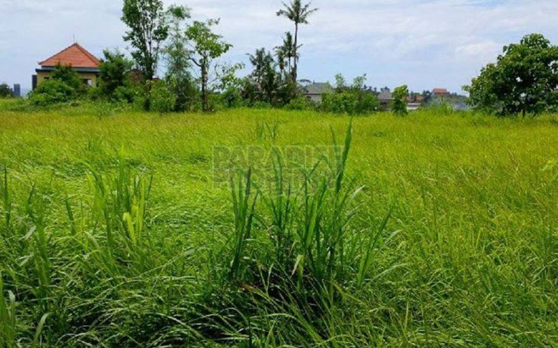 Good Potential To Build  Villas Or Surf Accommodation For Keramas Area