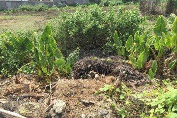 9,25 are Hak Milik land for sale in Umalas Bumbak Bali