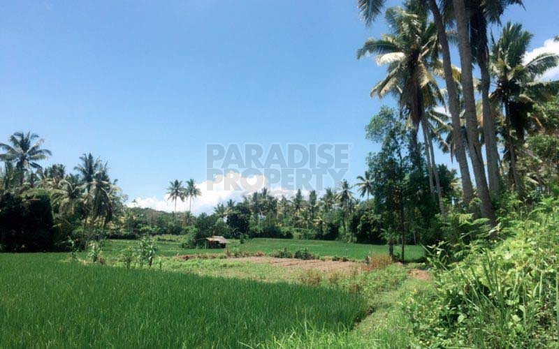 29 Are Freehold Land  South of Ubud – Hotel License and Architect Drawings available