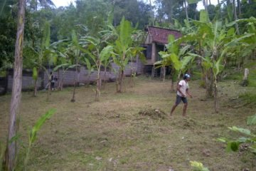 River Front Land in Buwit Tabanan