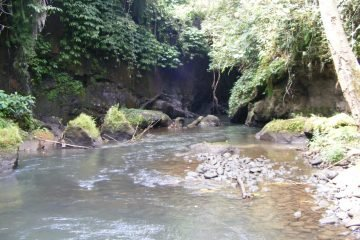 380 Are Freehold Land – River View – near Ubud – Opportunity for Hotel Developers