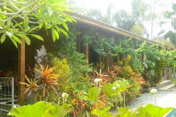 Magical Joglo Property  11 Are Freehold Land  Near Ubud