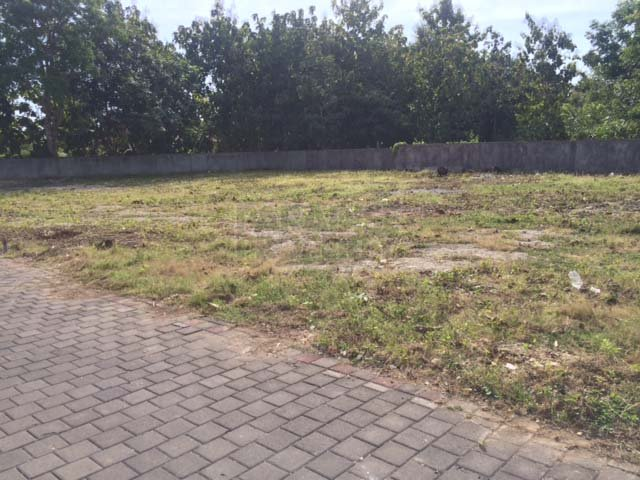 Prime Location Freehold Land to Develop Your Residence Here in Bali