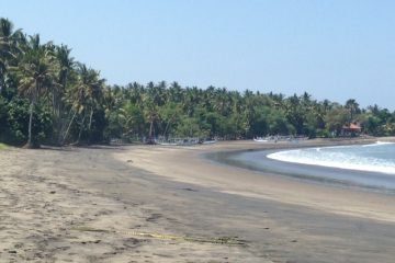 6.2 Hectare Beautiful Beachfront Land in Medewi