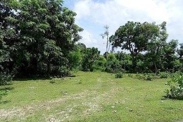 7500 M2  Jimbaran Freehold On Prime Location Zoned Under B3 / Akomodasi Wisata