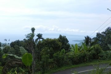 3450 Sqm Freehold Land for Sale in Candidasa with Ocean View