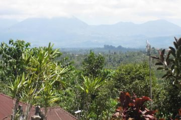 Hill freehold land at North Ubud