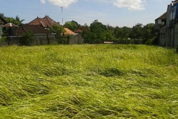 2 Well-Shaped Plots of 15,4 Are and 18,6 Are – Leasehold Land in Kerobokan