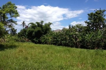 Fantastic Premium 21.15 are Freehold Land – Pererenan, Canggu