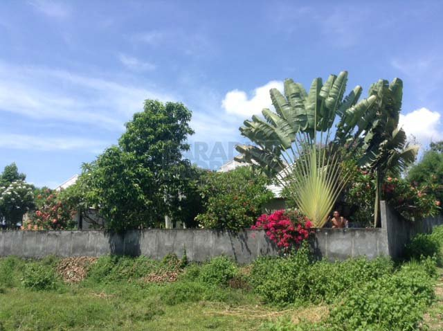 7 Are Leasehold Land – 15 Minutes South of Ubud