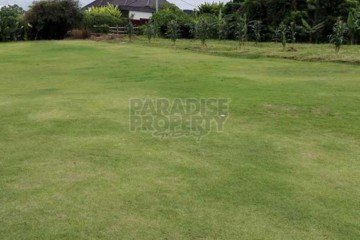 Flat Freehold Land in Babakan Canggu – 7.5 are around rice paddies