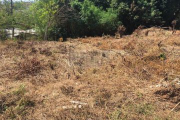 Exceptional 600m2 Freehold Land Close To The Beach