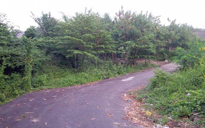 2 Freehold Land Parcels – Total Size 605m2 (6.05 are) in Canggu