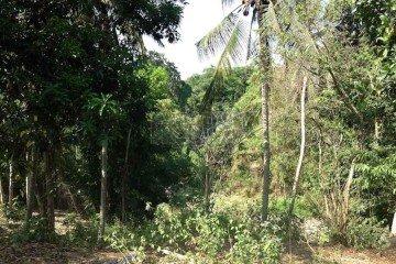 Dijual Tanah Eksklusif di Pantai Nyanyi, Tabanan