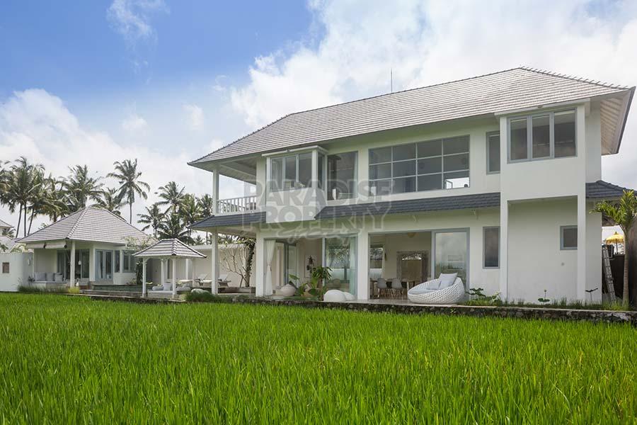 Dijual Villa Di Ubud Bali Pemandangan Sawah