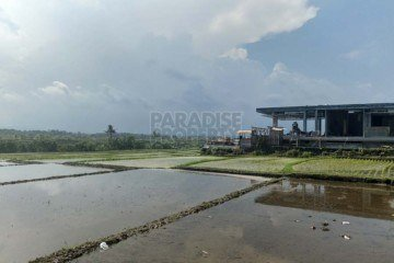 2414m2 Freehold Tabanan Land with Ocean Views