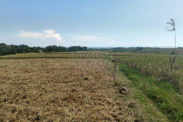 Freehold Berembeng – Tabanan Land with Ocean Views