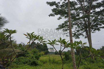 Freehold 7 are Land  close to Seseh Beach – Tabanan