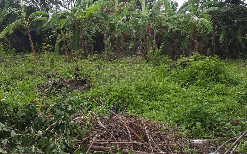 900M2 Leasehold Land in Padonan – Canggu