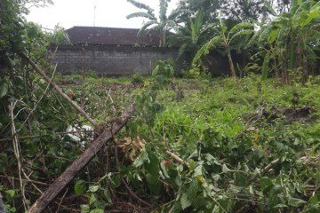 900M2 Leasehold Land in Padonan – Canggu