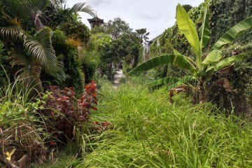 12 Are Freehold Land 150 Meters From Seminyak Beach