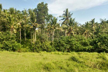 3290m2 (32.9 Are) Riverside Freehold Land in Berembeng, Tabanan