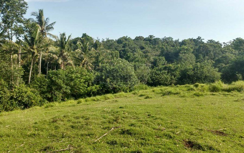 3290m2 (32.9 Are) Riverside Freehold Land in Berembeng, Tabanan