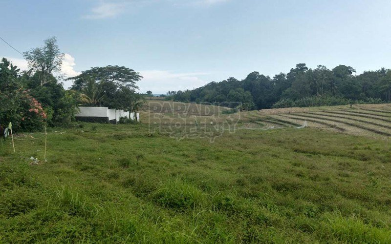 2940m2 (29.4 Are) Freehold Land with Paddy and Ocean Views