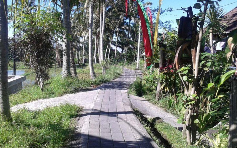 Exceptional 2200 sqm Leasehold Land on the Famous Sari Organic Walkway – Ubud