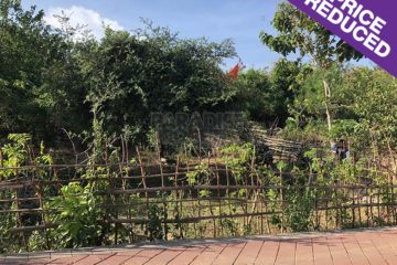 400m2 (4 are) Freehold Land in Ungasan