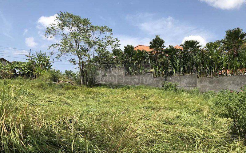 Don't Pass on this Parcel of Prime Pererenan Land