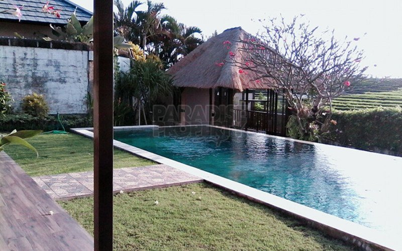 4 Bedroom Family Villa for Yearly Rental in Pererenan