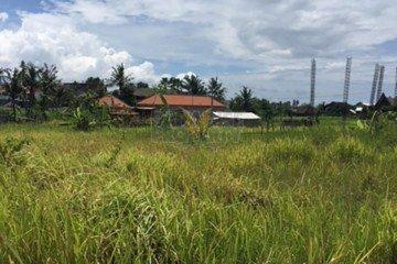 Peluang Investasi Tanah di Canggu