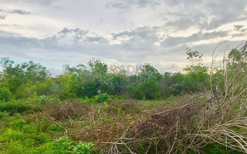 Dijual Tanah SHM di Jimbaran