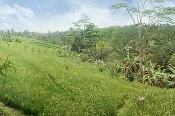 Stunning 95 Are Freehold Land with Amazing Views in Bajera – Tabanan