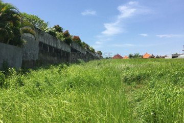 3450 Square Meter Land with Green View for Sale in Berawa Canggu