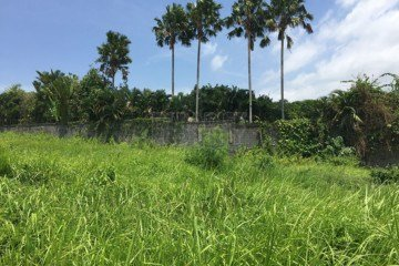600 Square Meter Development site for Sale in Berawa Canggu