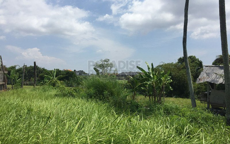 600 Square Meter Land with Green View for Sale in Berawa Canggu
