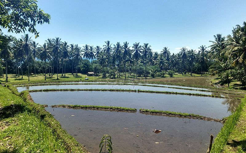 Absolute beachfront – Beautiful 8000m2 Freehold Land in Balian
