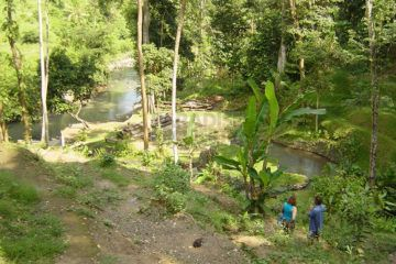 Development opportunity – 6,000m2 of Pristine, Riverside, Freehold Land in Nyanyi
