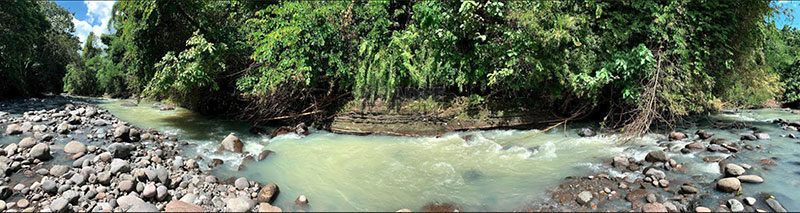 """""""Ubud by the Sea"""" – 1.325 Hectares Freehold Land for Sale in Jembrana with Spectacular Views"""