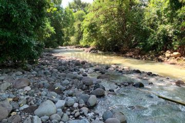 """Ubud by the Sea"" – 1.325 Hectares Freehold Land for Sale in Jembrana with Spectacular Views"