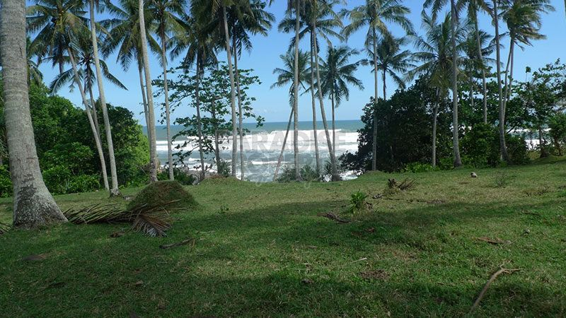 Absolute Oceanfront – 10,700m2 Freehold Land Near Balian