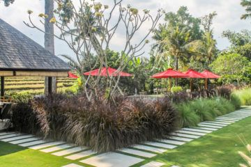 Private Residence With 5 Bedrooms Available for Rent in Canggu