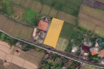 Leasehold Land for 20 Years in Cemagi With Rice Field Views
