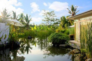 Luxury Boutique Hotel with 26 Rooms – North of Ubud – Great Investment – Freehold Title