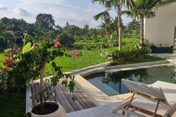 Modern Beautiful 3 Bedroom Villa – South of Ubud  – Rice Field Views