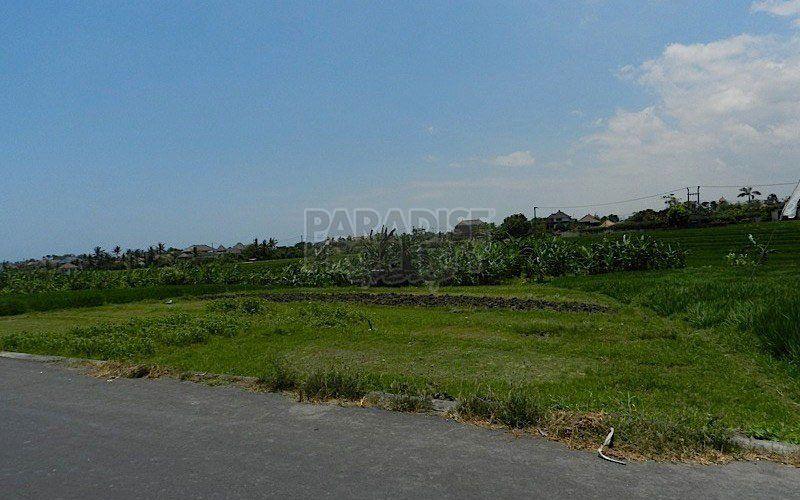 Freehold Land (2000 Sqm) In Pererenan  Canggu Located on Tourism Zoning