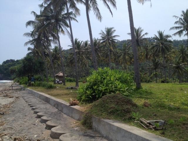 Dijual Tanah SHM di Senggigi, Lombok